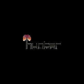 Hunter Electronic AB